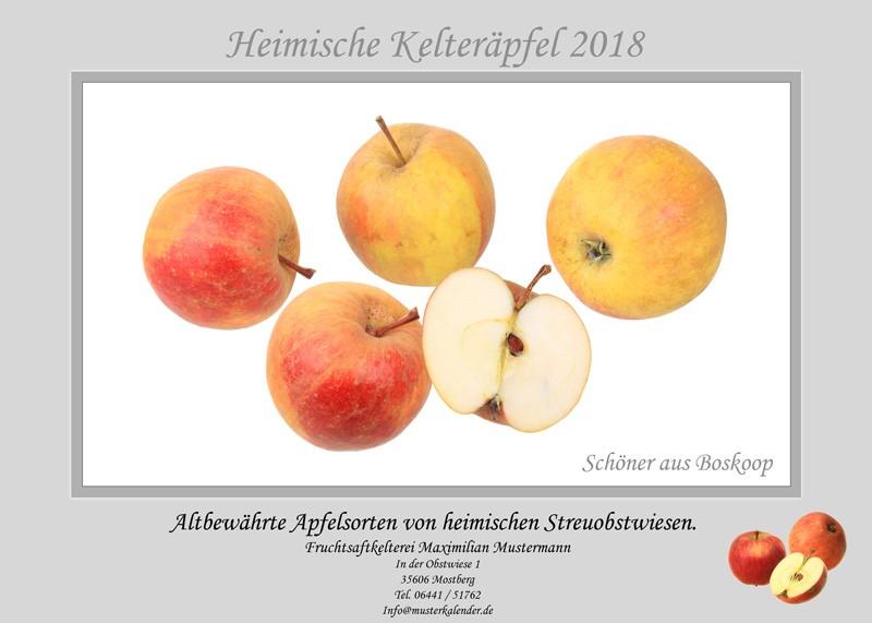 Kalender-Kelteräpfel-Werbeprodukt